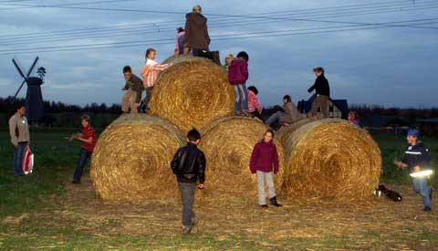 Spiel - Bauernhof